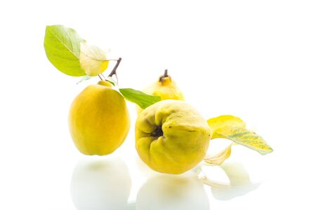 ripe natural organic quince isolated on a white background