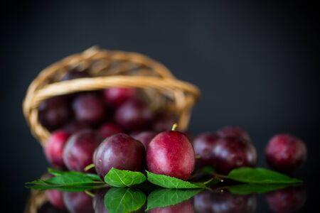 organic red ripe cherry plum isolated on black background
