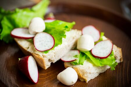 sandwich with cheese, lettuce and red radish on a wooden table
