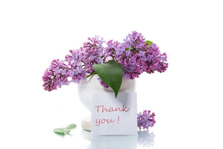 bouquet of beautiful blooming lilacs in a vase