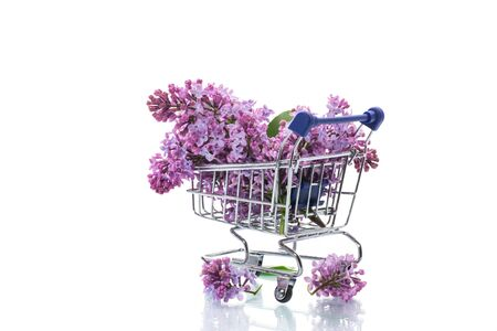 bouquet of spring blossoming lilacs in a shopping cart Banco de Imagens