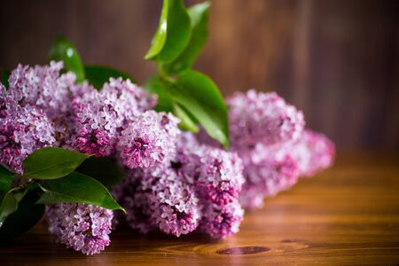 bouquet of beautiful spring flowers of lilac on the table Banque d'images