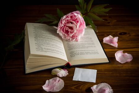 peony pink beautiful flower, book, empty card on a wooden table 스톡 콘텐츠