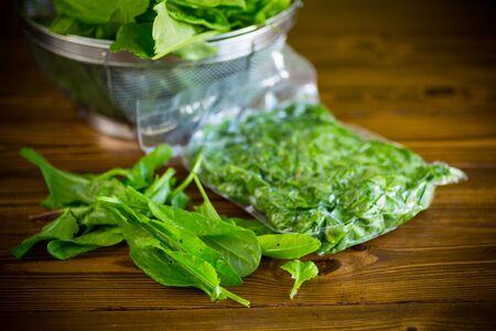fresh green sorrel in a vacuum bag, in a colander