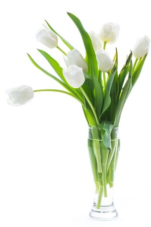 beautiful bouquet of white tulips isolated on white background