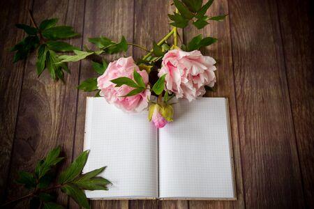 beautiful pink blooming peonies on a detailed blank notebook Stok Fotoğraf