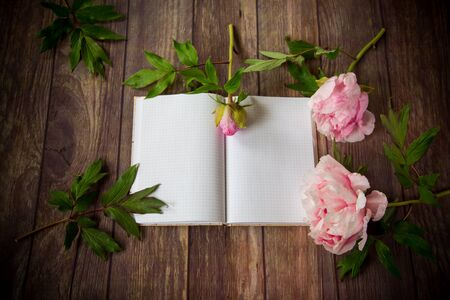 beautiful pink blooming peonies on a detailed blank notebook Stok Fotoğraf - 147585316