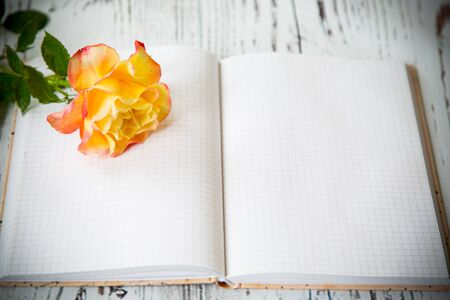 Beautiful yellow rose and blank notebook as a blank 스톡 콘텐츠