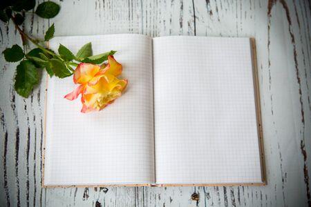 Beautiful yellow rose and blank notebook as a blank 版權商用圖片