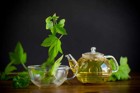 summer refreshing organic tea from currant leaves in a glass teapot on a wooden table Stock fotó - 155444585