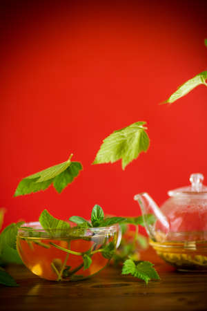 summer refreshing organic tea from currant leaves in a glass teapot on a wooden table Stock fotó - 155444405