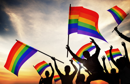 Group of People Holding Rainbow Flags photo