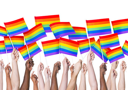 sexual orientation: LGBT Flag