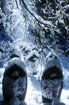 Angels covered in snow. photo