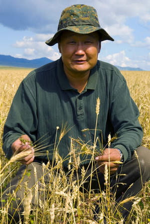 southeast asian ethnicity: Agriculture in Mongolia. Stock Photo