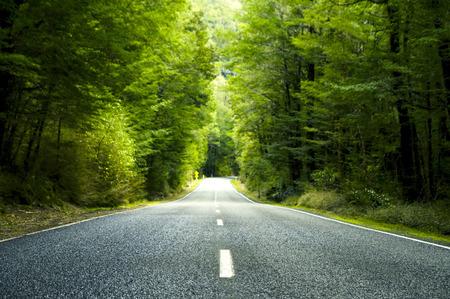 Sommer Landstraße mit Bäumen neben. Standard-Bild