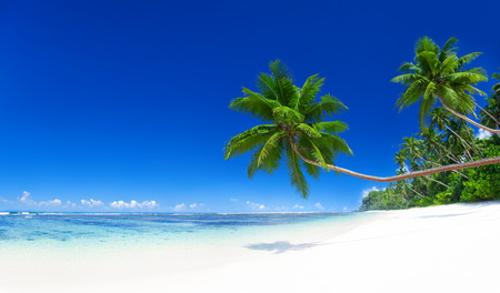 samoa: Tropical Paradise. Stock Photo