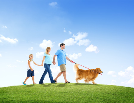 animal family: Family Walking Together with Their Pet Dog Outdoors Stock Photo
