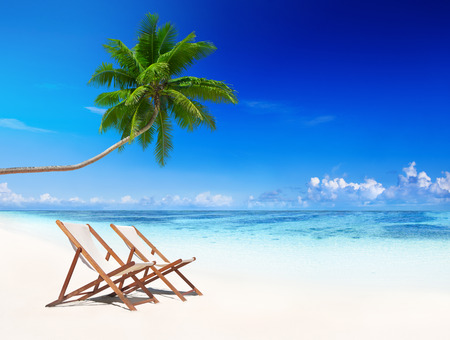 tropical tree: Deck chairs on tropical beach.