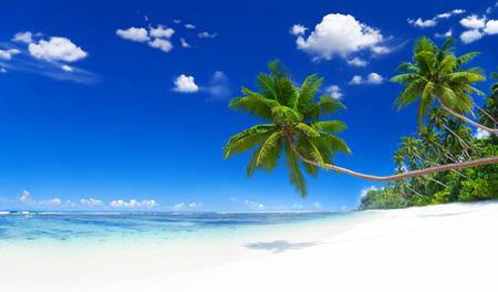 ビーチ 写真素材 - 34401938
