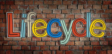 lifecycle: Lifecycle Brick wall Single Word Text Background Clean Concept