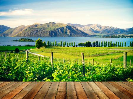 ニュージーランドのコンセプトで美しい自然の田園地帯