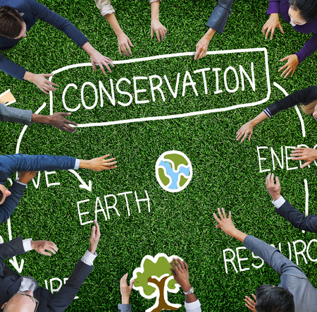 environment friendly: Conservation Environment Earth Ecology Concept Stock Photo