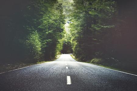 概念の横にある木の夏国の道路