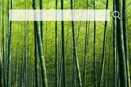 bamboo: Search Box Web Online Technology Internet Website Concept