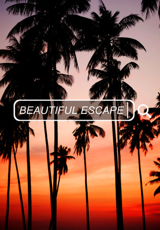 beach scene: Beautiful Escape Enjoyment Carefree Freedom Concept