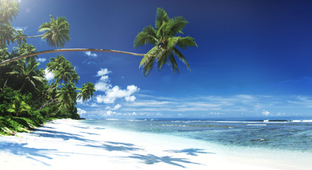 beach panorama: Tropical Beach Travel Holiday Vacation Leisure Nature Concept