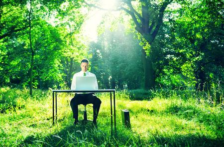 Businessman Working Computer Forest Green Concept Foto de archivo