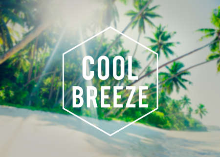 breeze: Cool Breeze Summer Freedom Happiness Concept