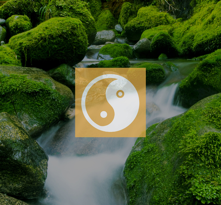 zenlike: Yin Yang Balance Contrast Opposite Religion Culture Concept Stock Photo