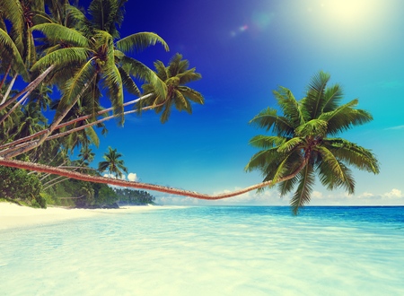 pretty people: Tropical Paradise Beach Ocean Island Travel Vacation Concept