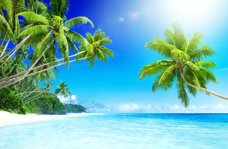 paradise beach: Tropical Paradise Beach Seascape Travel Destination Concept