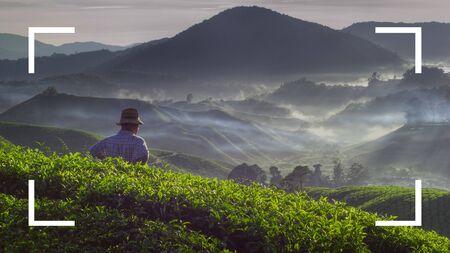 tea crop: Camera Focus Frame Border Copy Space Concept