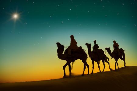 세 현명한 남자 낙타 여행 사막 베들레헴의 개념