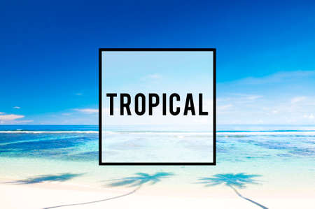 turqoise: Summer Beach Friendship Holiday Tropical Vacation Concept