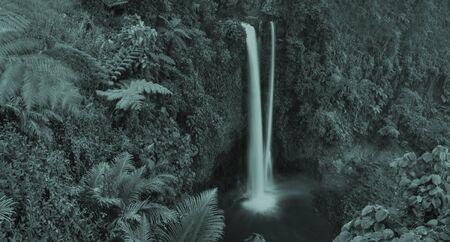 scenics: Waterfall Nature Scenics Waterfall Forest Concept Stock Photo
