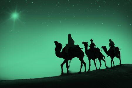 reyes magos: Concepto Reyes Magos Camello Desierto Viaje Belén