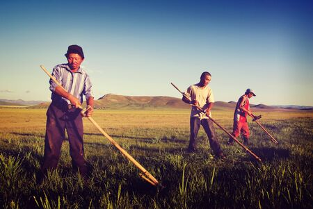 mongolian: Mongolian Farmers Working Hard Agricultural Crop Concept