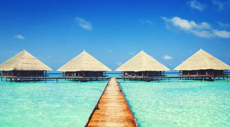 sunny beach: Dock Maldives Clear Water Travel Summer Sea Ocean Concept