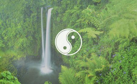 lush foliage: Yin Yang Balance Contrast Opposite Religion Culture Concept Stock Photo