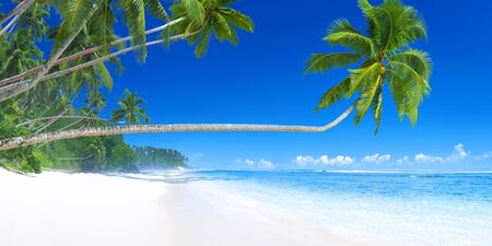 Tropical Paradise Beauty In Nature Travel Concept Stock Photo