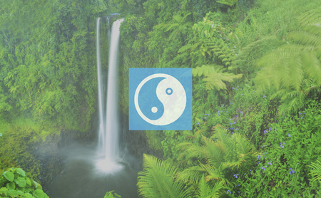 yinyang: Yin Yang Balance Contrast Opposite Religion Culture Concept Stock Photo