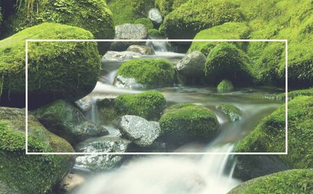 greenery: Cascading Waterfall Cascading Atmosphere Greenery Concept Stock Photo