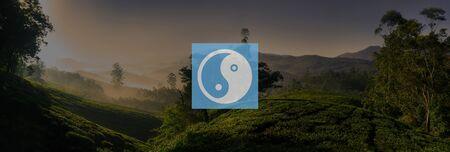 spiritual growth: Yin Yang Balance Contrast Opposite Religion Culture Concept Stock Photo