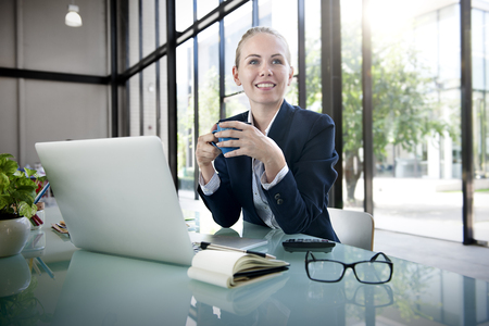 businesswoman: Businesswoman Laptop Technology Strategy Planning Working Concept