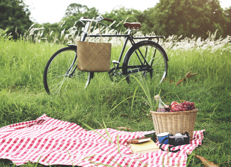 Picnic Basket Handbag Vacation Leisure Lifestyle Concept Фото со стока - 52371593